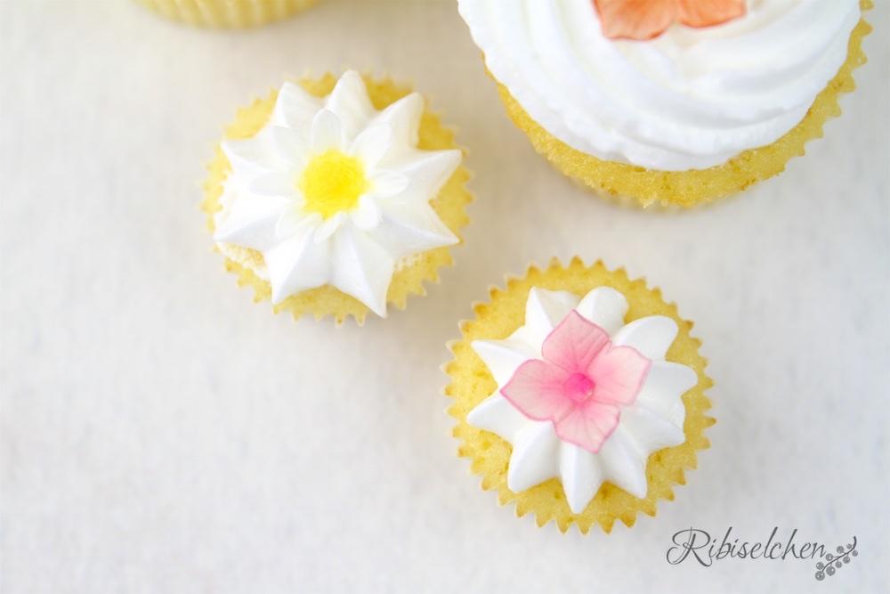 Cupcakes mit Zuckerblüten Anleitung